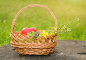 Spring basket with heart shape — Photo