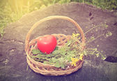 Spring basket with heart shape — Stock Photo
