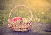 Kalp şeklinde Bahar Sepeti — Stok fotoğraf