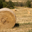 Harvest time: agricultural landscape with hay bales — Stock Photo