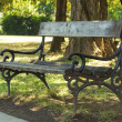Bench in park — Stock Photo #33422755