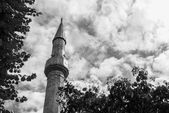 Big temple building minaret tower — Foto Stock