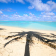 Stunning tropical beach - Stock Photo