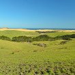 New Zealand Far North landscape - Stock Photo