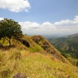 Ella landscape. Sri Lanka — Stock Photo
