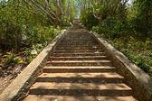 Gamla stentrappa — Stockfoto