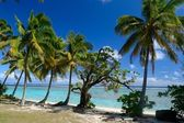 Dreaming Cook Islands — Stock Photo
