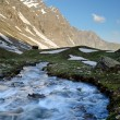 Wild waters in the Alps — Stock Photo