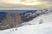 White ski slope — 图库照片