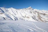 Toz kar keyfi — Stok fotoğraf