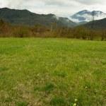 Alpine cloudscape in spring — Stock Photo #45145999
