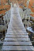 Rope suspended footbridge — Stock Photo
