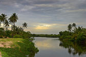 Sunset on backwaters — Stock Photo