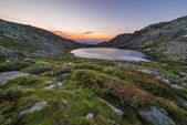 High altitude alpine lake — Stock fotografie