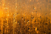 Wet yellow - gold glass background with drops and sparks — Foto Stock