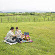 Japanese couple enjoying picnic in a green field - Stock Photo