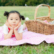 Girl having picnic in a field - Stock Photo