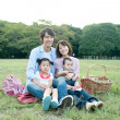 Family having picnic in a park - Foto Stock