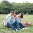Family having picnic in a park - Stok fotoğraf