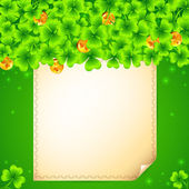 Green clovers background with golden coins — Stock Photo