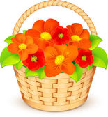 Vector basket with beautiful flowers — Stock Vector