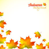 Autumn falling down foliage vector background — Stock Vector