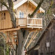 Tree house — Stockfoto