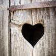 Wooden heart — Stock Photo #16771413