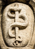 Aesculapian staff - Caduceus — Stock Photo