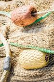 渔网 — 图库照片