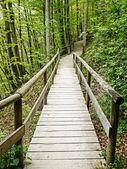 Old wooden footbridge — Stock Photo