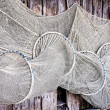 Fishing net -  