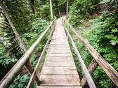 Old footbridge — Stock Photo