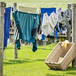Stock Photo: Drying