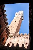 Siena italien — Stockfoto