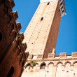 Siena - italy — Stock Photo