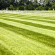 Horseracing track - Stock Photo