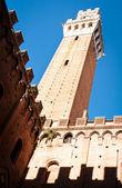 Siena - italien — Stockfoto