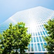 Office building — Stock Photo #21229269