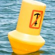 Royalty-Free Stock Photo: Buoy