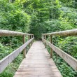 Old wooden footbridge — Stock Photo