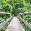 Old wooden footbridge — Stockfoto