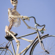 Cycling skeleton - Foto de Stock