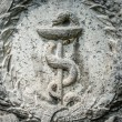 Aesculapian staff - Caduceus — Stock Photo