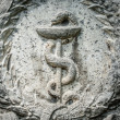 Aesculapistaff - Caduceus — Stock Photo #22645381