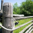Old fence — Stock Photo #22947250