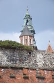 Castle Wawel — Stock Photo