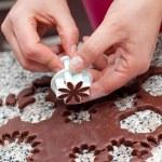 Chocolate cookies shaped flower — Stock Photo
