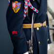 Detail of soldier protecting Prague Castle — Stock Photo