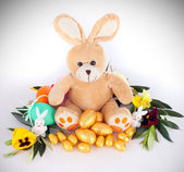 Plush bunny — Stock Photo